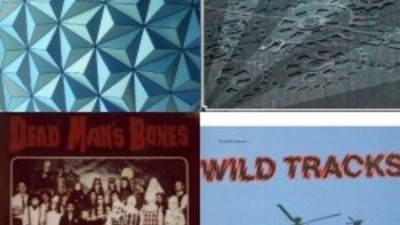 Musikreviews - Russell Haswell, Gyratory System, Lenny Dee und Dead Man's Bones