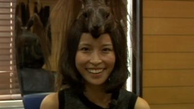 Japanse haarhoedjes
