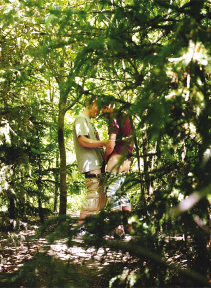 Bulinação na Floresta
