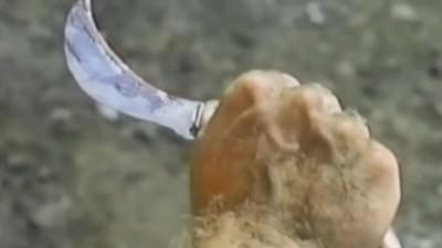 Dick-Stabbing Knives
