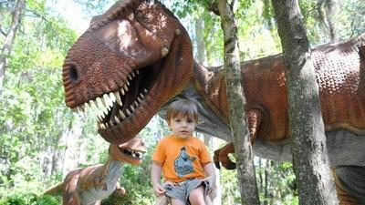 Meet the Nieratkos - Bears Are Not Dinosaurs