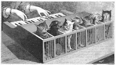 Learning to Play the Katzenklavier