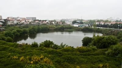 O estádio-que-nunca-foi do Salgueiros é um lago gigante no meio da cidade