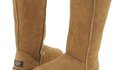 Uggs Are Cool, Everyone Is Stupid