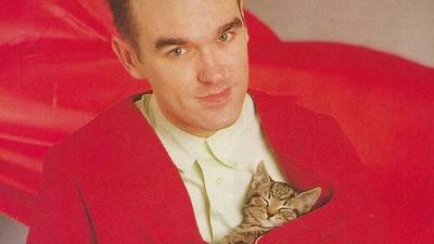 El reino de los animales: Morrissey