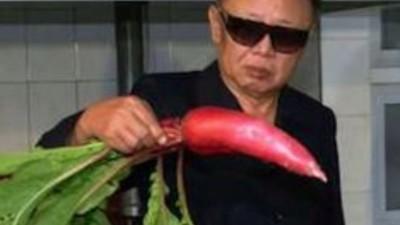 KIM JONG-IL MIRANDO COSAS