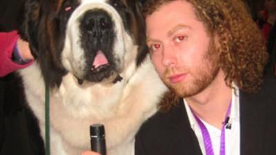 The Westminster Dog Show... ¡En ácido!