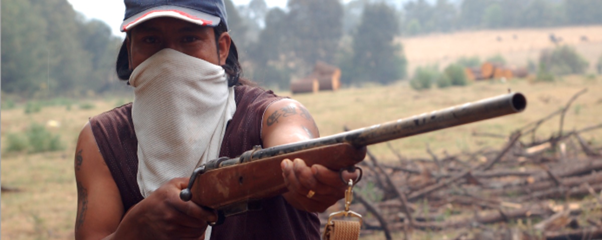 The New Zapatistas?