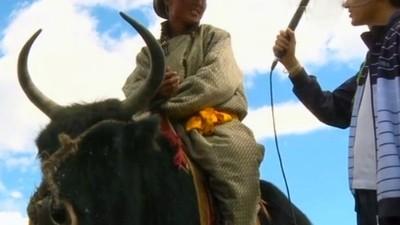 Festivalul Iacului din Mongolia