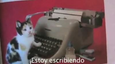 Gatitos y mamadas en el nuevo clip de Manos de Topo