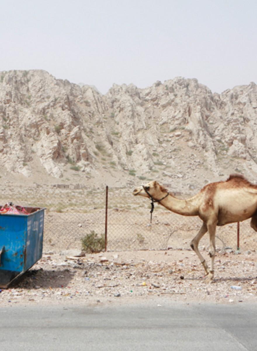 Photo Issue 2012: Sueños del desierto