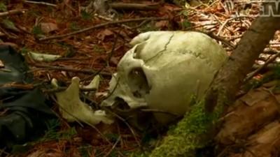 La foresta dei suicidi di Aokigahara