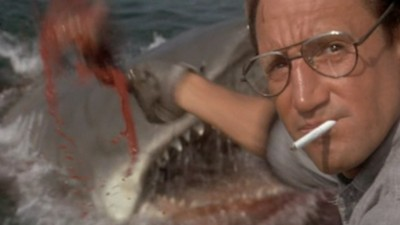 We're Gonna Need a Bigger Boat