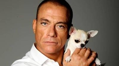 Uno, nessuno e Van Damme