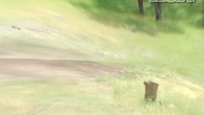 Brian Anderson Trailer