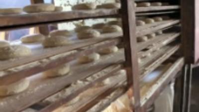 Síria: Sob Fogo nas Filas do Pão em Alepo