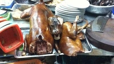 I Ate a Dog in Hanoi