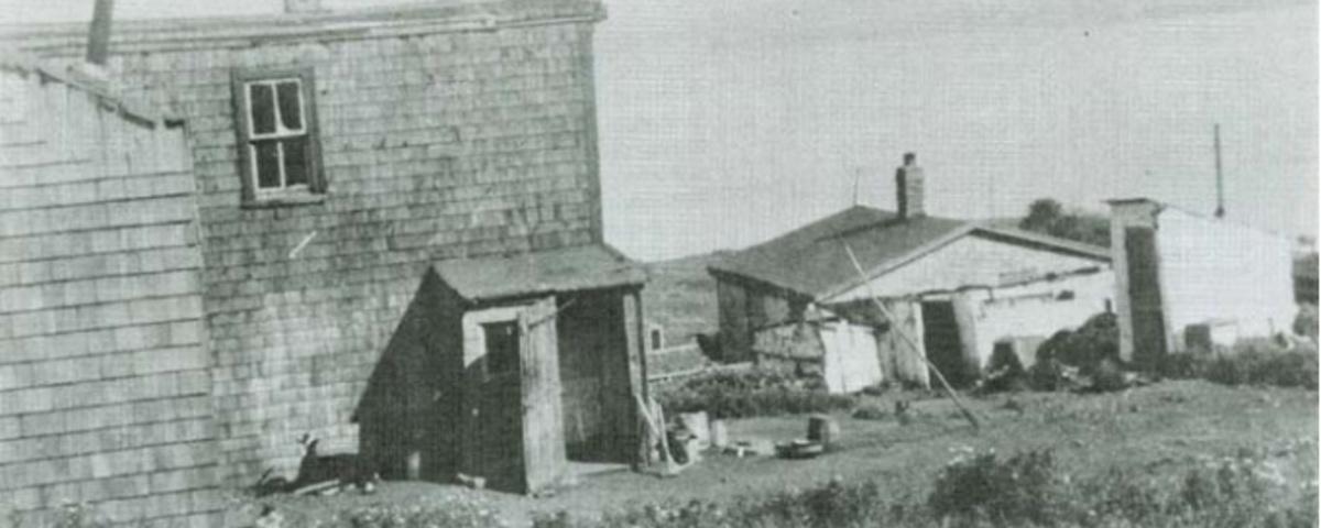 Africville: Canada's Secret Racist History