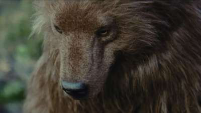 'Bear' de Nash Edgerton