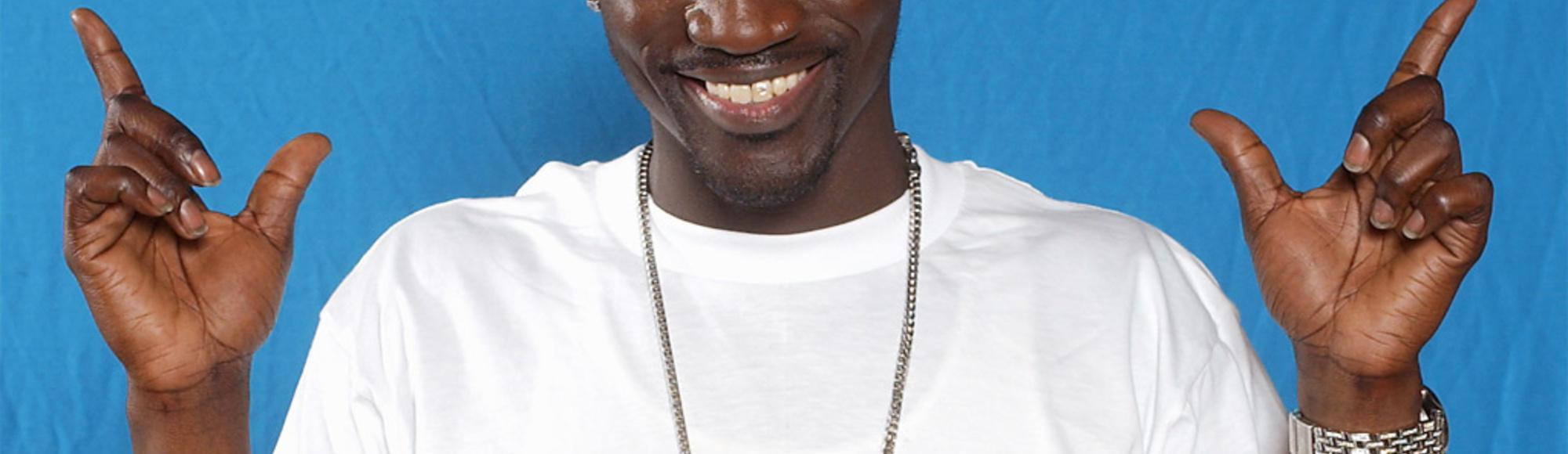 Akon's Wikipedia Page Is Amazing