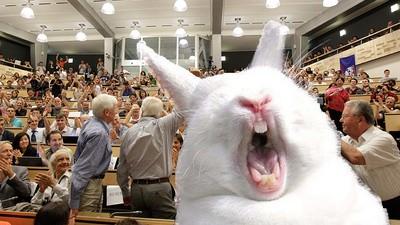 Het Higgs-boson-deeltje is nu echt gevonden en dat blijkt dus vet saai te zijn, yo