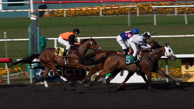 Horse Racing: The Sport of America's Lower Class