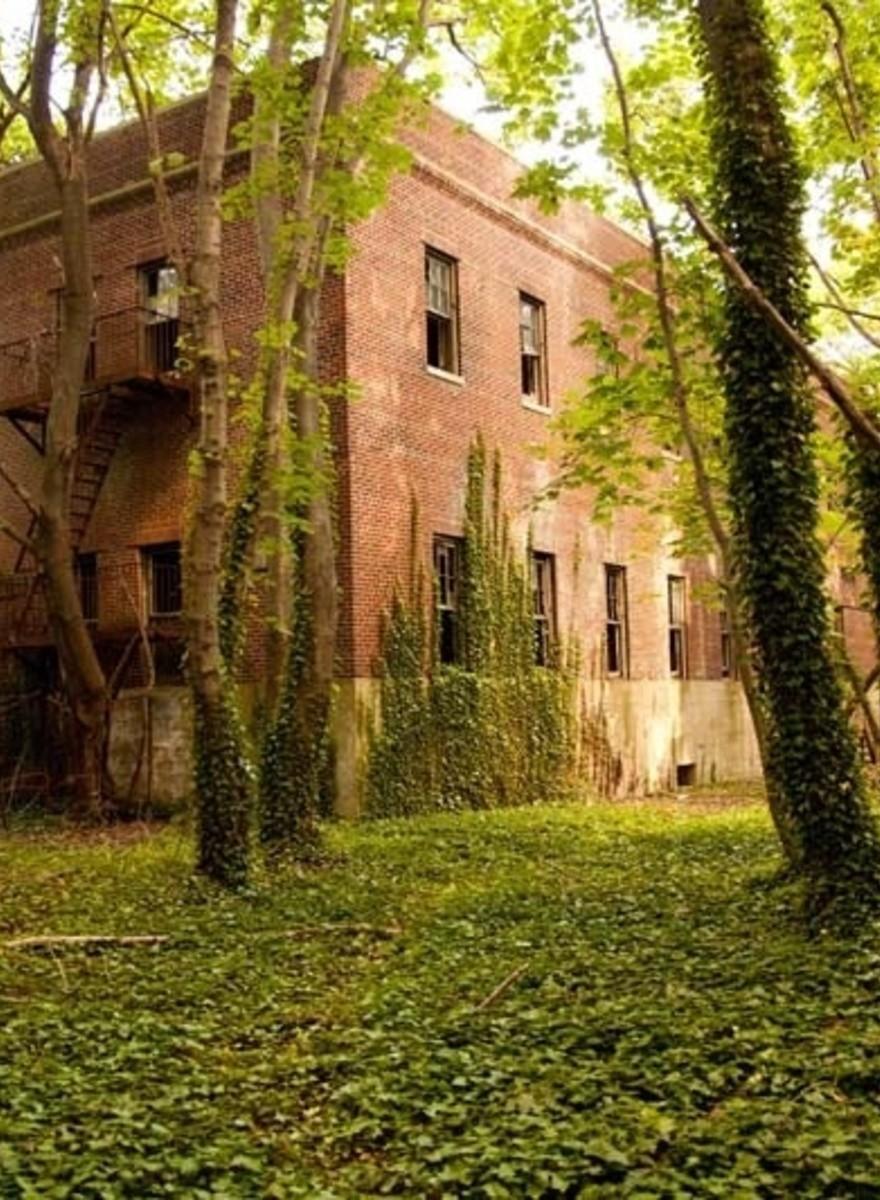 Fui de caiaque até uma ilha abandonada em Nova Iorque