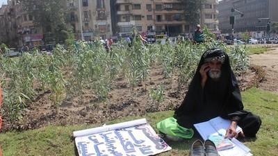 Het Tahrirplein wordt opgeknapt met wat plantjes en een likje verf