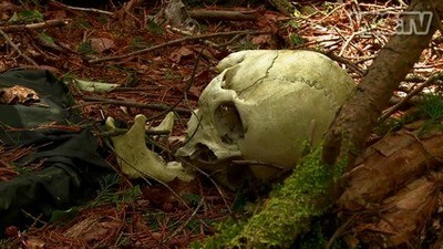 El bosque de los suicidas