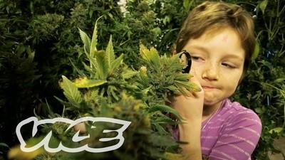 Marihuana pro děti