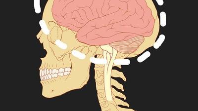 Russell Hanson vuole creare un backup del vostro cervello