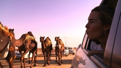 Miss Camel Beauty Contest