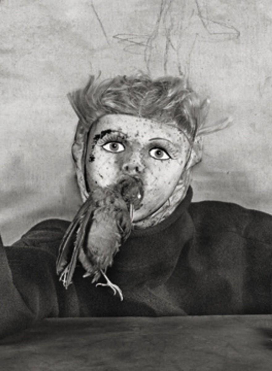 Roger Ballen's 'Asylum of the Birds'