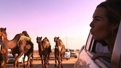 Concurso de Miss Camelo