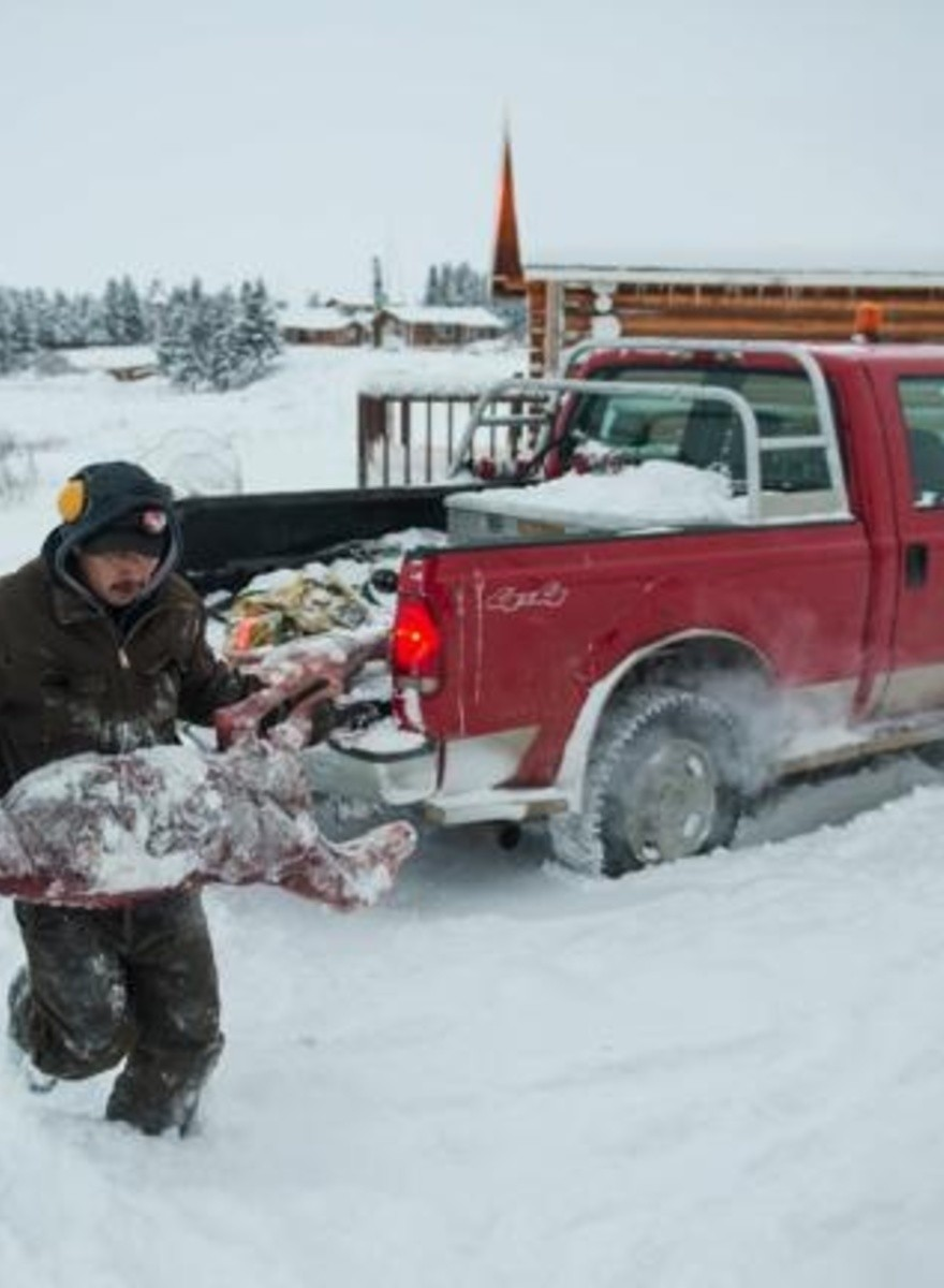 How to Catch Pelts In Canada's Snowy Northwest Territories