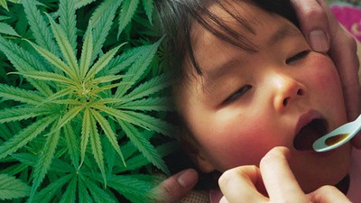 The Battle for Medical Marijuana in Japan