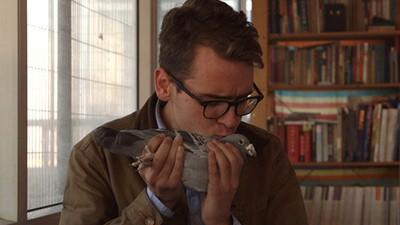 Le pigeon à 300 000 dollars