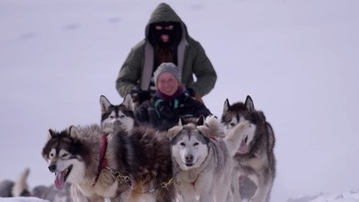 Dog Sledding Is the Best Mode of Transportation