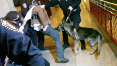 After a Police Dog Bit His Leg, This Protester Was Jailed Thanks to a Cop's Testilying