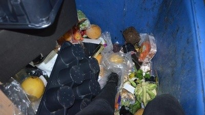 I Ate Out of Dumpsters in Denmark for Two Weeks