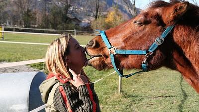 Tiere können Sex mit Menschen zustimmen—behauptet dieser Betreiber eines Tierbordells
