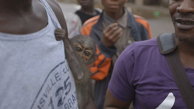 Liberia's New Ebola Outbreak
