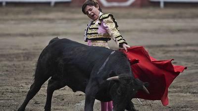 Teenage Bullfighters