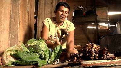 Viaje en familia para probar la ayahuasca