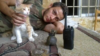 FSA Kittens est un blog sur de gentils Syriens en compagnie de gentils chats