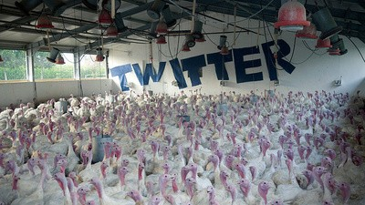 Twitter è sempre più simile a Facebook, ed è terribile