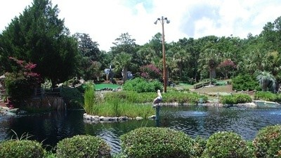 The Masters of Miniature Golf