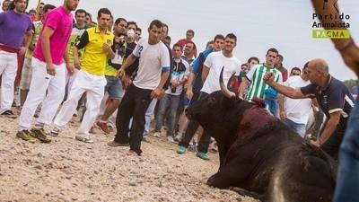 El Toro de la Vega demuestra lo garrulos que somos en España