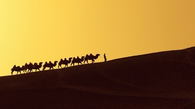 How Did the FBI Find the Silk Road Servers, Anyway?