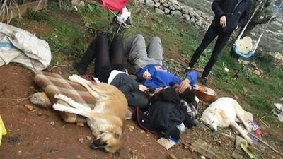 Hice Couchsurfing con los colonos en Tierra Santa